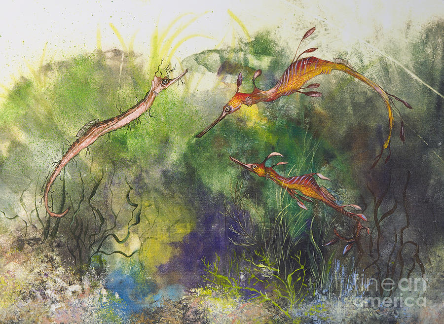 Gorr Drawing - Weedy And Ribbon  Sea Dragons by Nancy Gorr