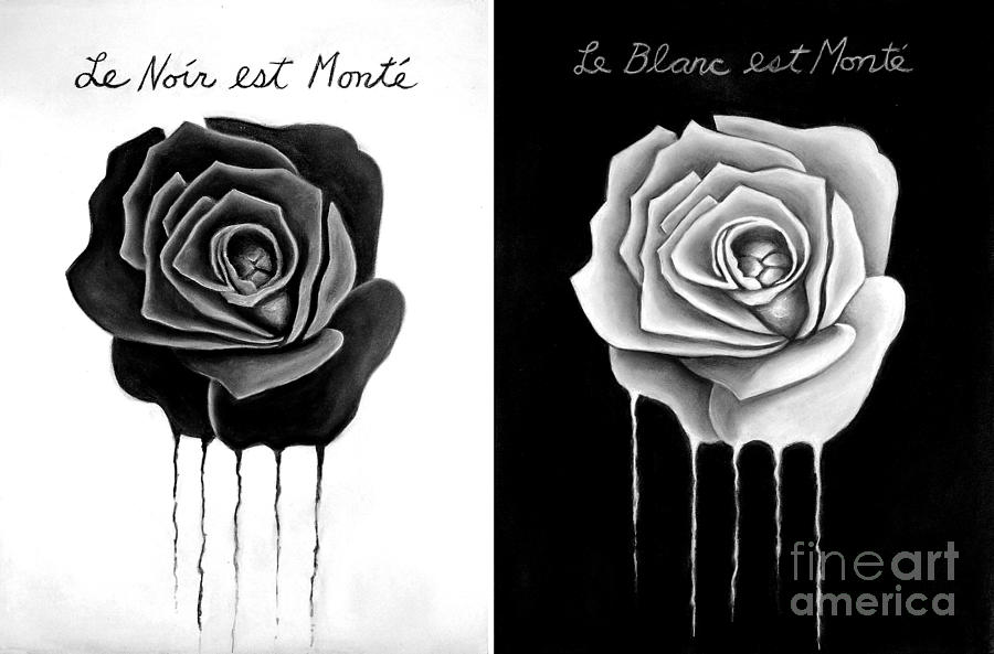 weeping black and white roses drawing by darrell ross
