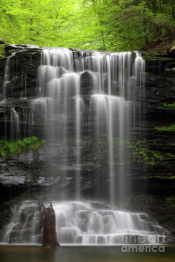 While My Waterfall Gently Weeps Photograph