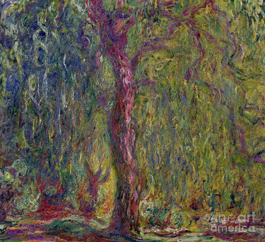 Impressionist Painting - Weeping Willow by Claude Monet