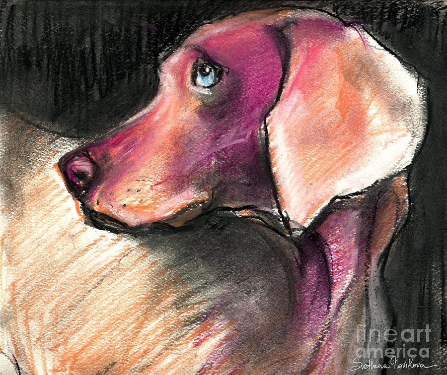 Dog Portrait Painting Painting - Weimaraner Dog Painting by Svetlana Novikova