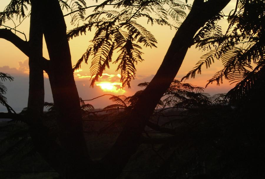 Landscape Photograph - Welcome To Jamaica 7 Rise   by John Powell