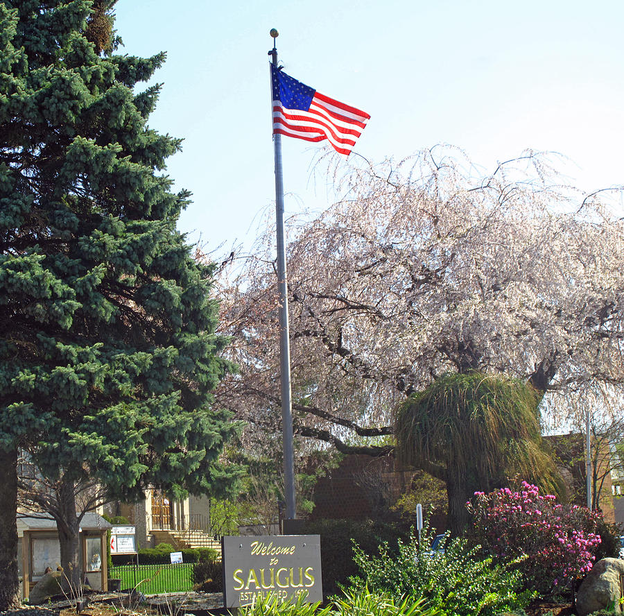 Saugus Photograph - Welcome To Saugus by Barbara McDevitt