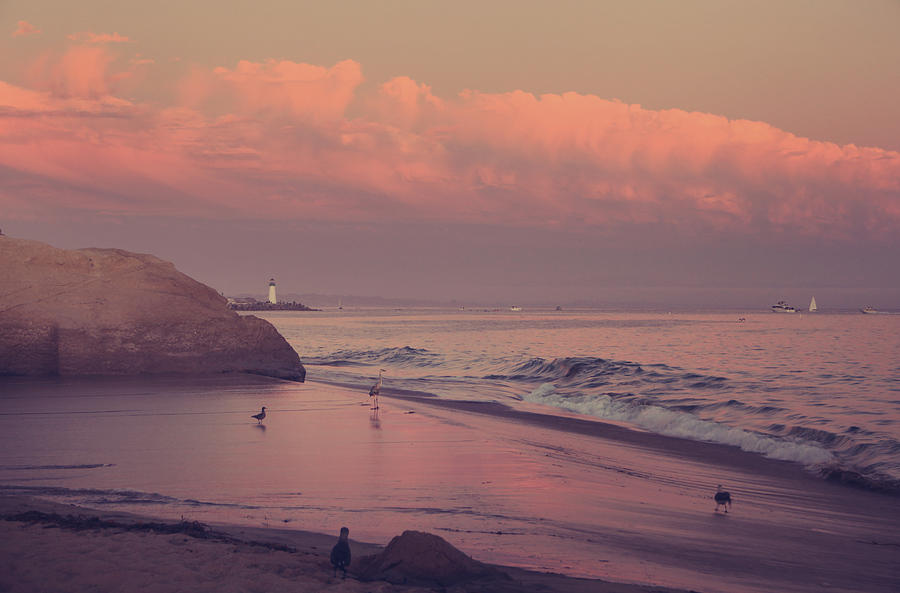 Santa Cruz Photograph - Well Just Sit Here For A While by Laurie Search