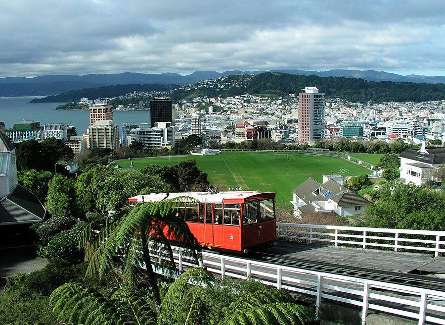 New Photograph - Wellington by David and Mandy