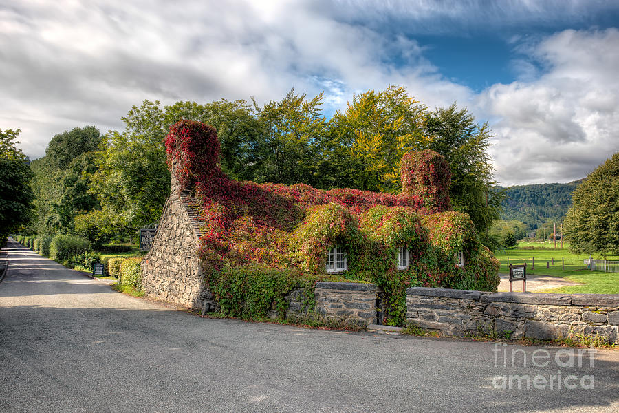 Pont Fawr Photograph - Welsh Cottage by Adrian Evans