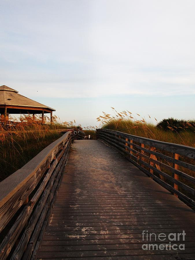 Sea Grass Photograph - Went For A Stroll On The Boardwalk by Meghan Pettis