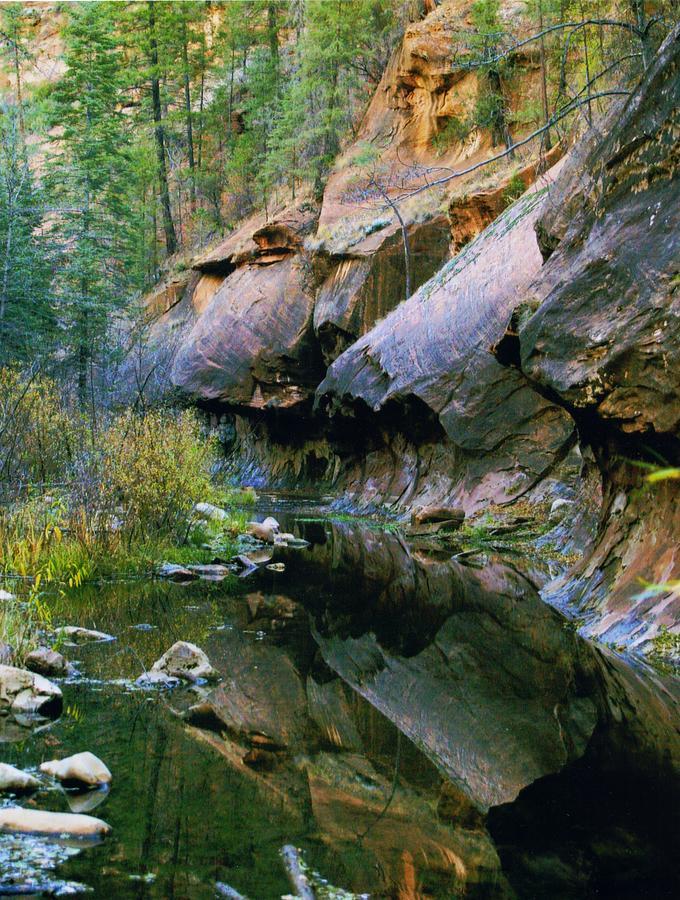 Oak Creek Photograph - West Branch Oak Creek by Joshua House