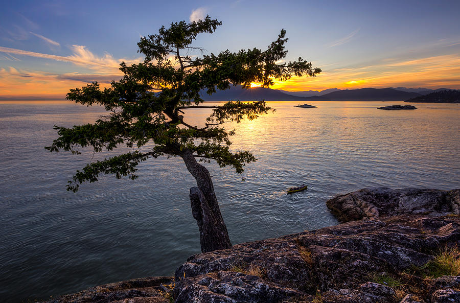 Landscapes Photograph - West From Juniper Point by Alexis Birkill