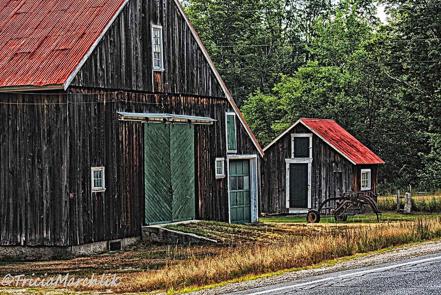 Nature Photograph - West Side Road by Tricia Marchlik