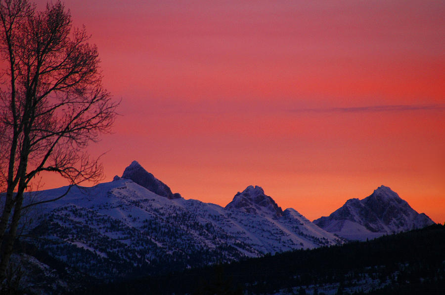 Tetons Photograph - West Side Teton Sunrise by Raymond Salani III