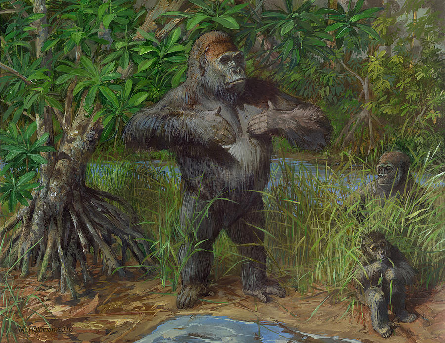 Wildlife Painting - Western Lowland Gorilla by ACE Coinage painting by Michael Rothman
