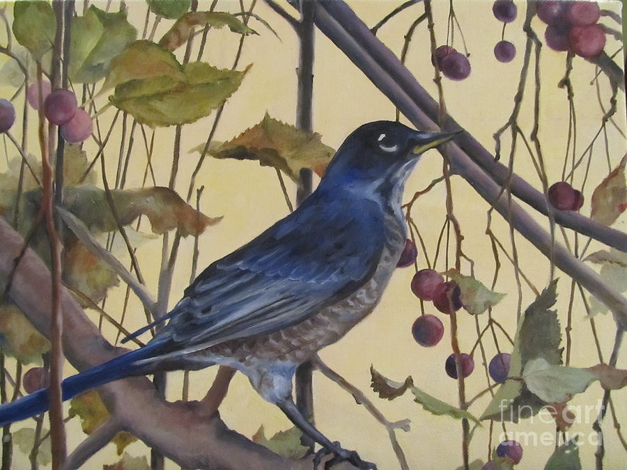 Robin Painting - Western Robin by Karen Olson