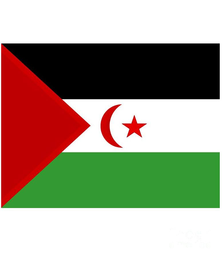 Western Digital Art - Western Sahara Flag by Frederick Holiday
