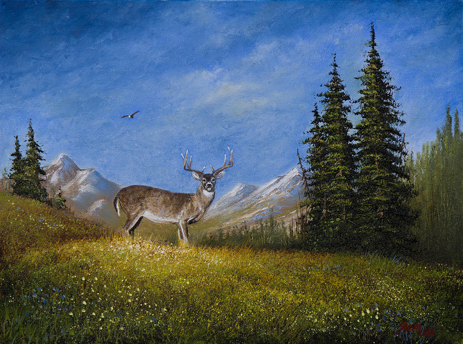 Landscape Painting - Western Whitetail by C Steele
