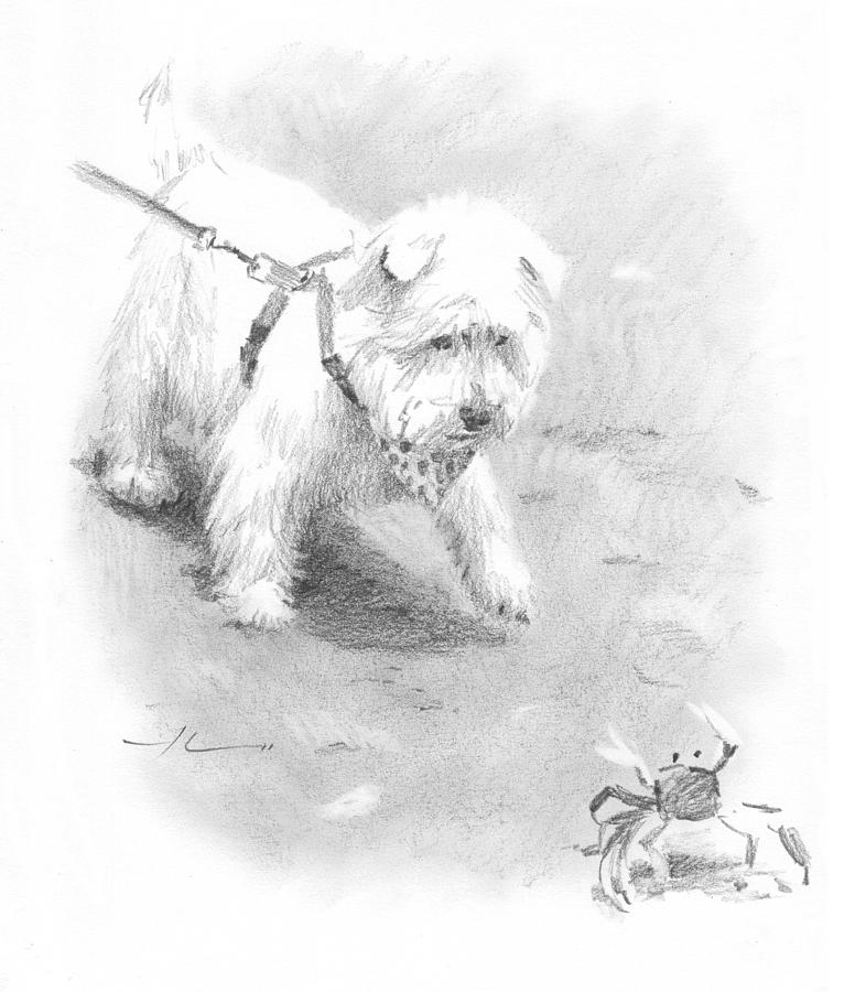 Westie On Beach Pencil Portrait  Drawing by Mike Theuer