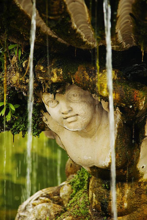 Wet by David Davies