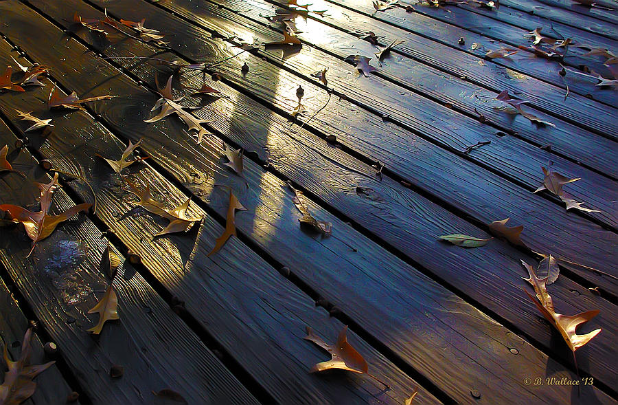 2d Photograph - Wet Deck by Brian Wallace