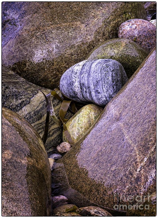 Sea Shore Photograph - Wet Pebbles by George Hodlin