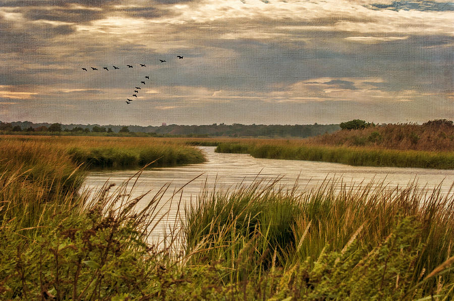 Marsh Photograph - Wetlands In September by Cathy Kovarik