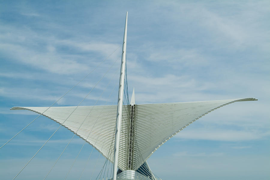 Milwaukee Art Museum Photograph - Whale Tail by Devinder Sangha