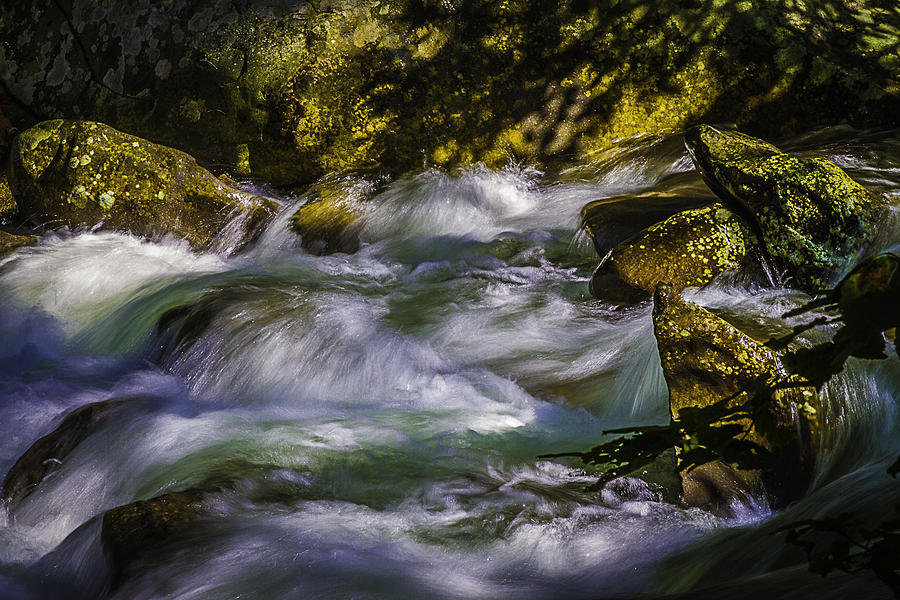 Mountain River Photograph - What A Rush by Barry Jones