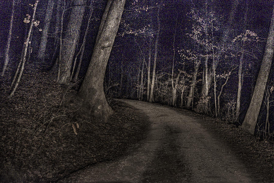 Night Digital Art - What Lies Lurking by William Fields