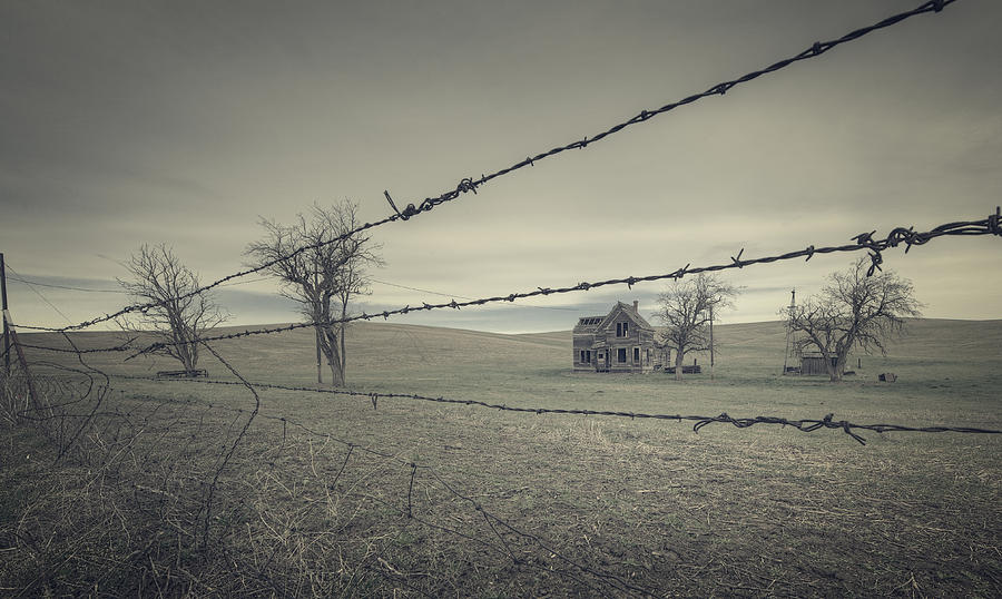 Oregon Photograph - What Once Was by Everet Regal