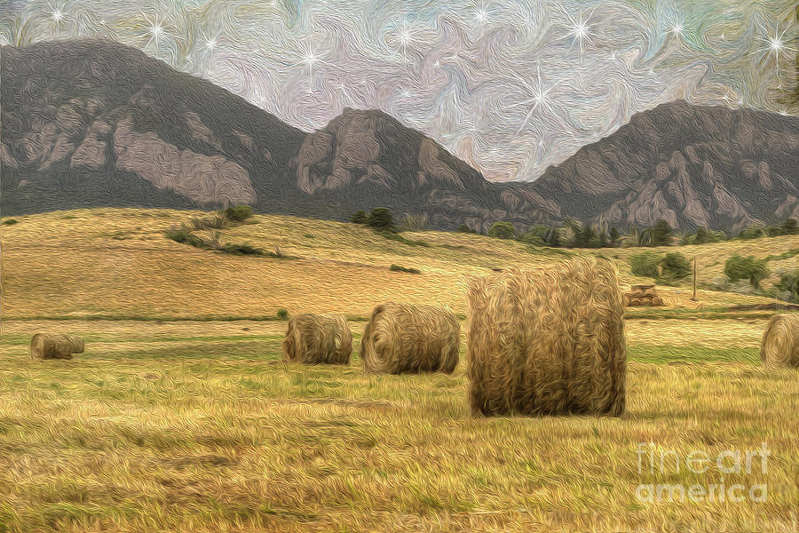 Agriculture Photograph - What The Hay by Juli Scalzi