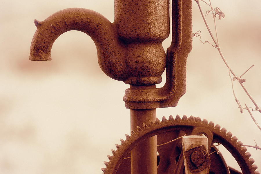 Whats On Tap Photograph