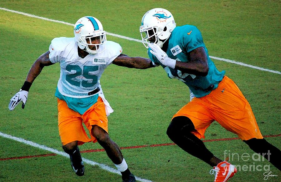 Miami Dolphins Photograph - Whats The Rush by Shawn Lyte