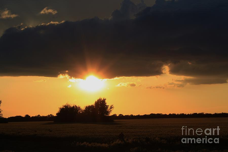 Sun Photograph - Wheatfield Sunset With Clouds And Trees by Robert D  Brozek