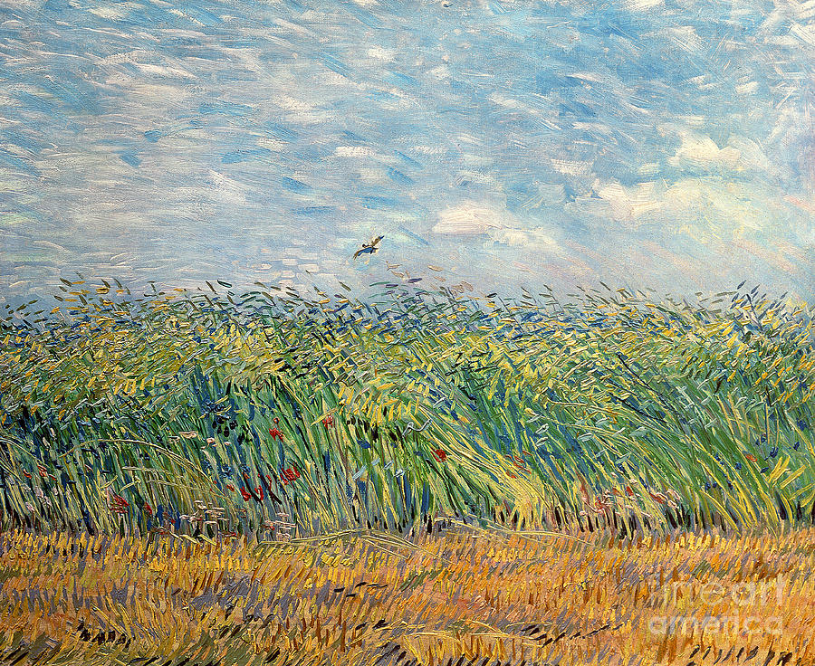 Post Painting - Wheatfield with Lark by Vincent van Gogh