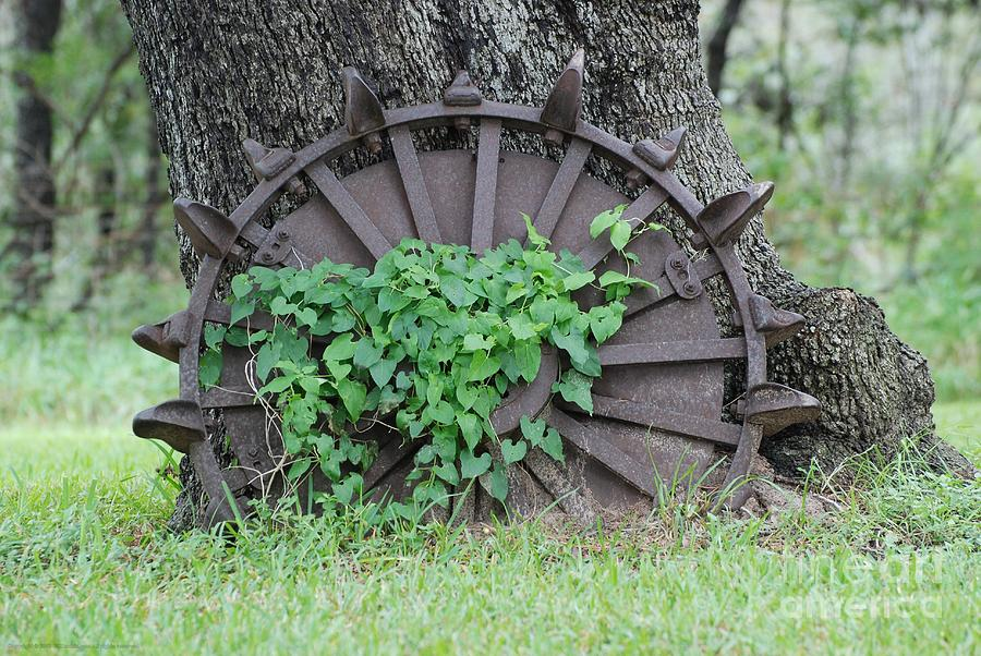 Tractor Photograph - Wheel Of Steel by GD Rankin