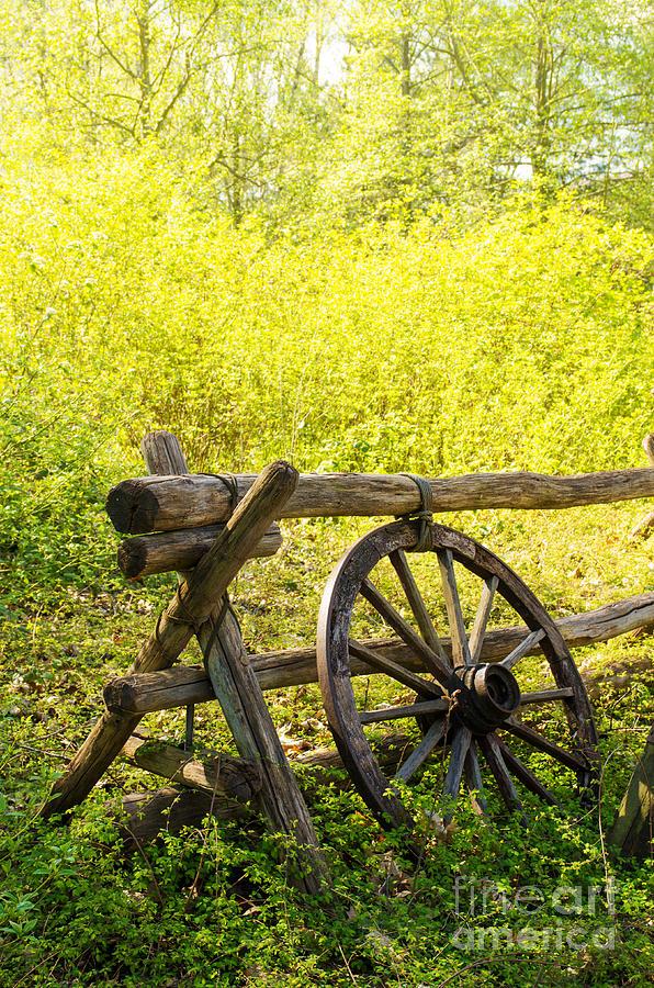 Wheel Photograph - Wheel On Fence by Carlos Caetano