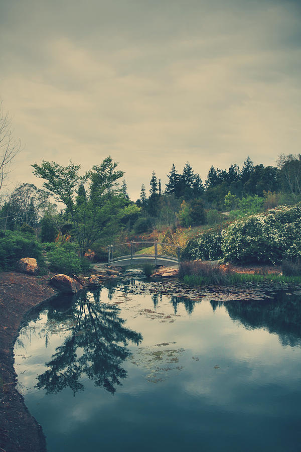 Quarryhill Botanical Garden Photograph - When Its Sweet by Laurie Search