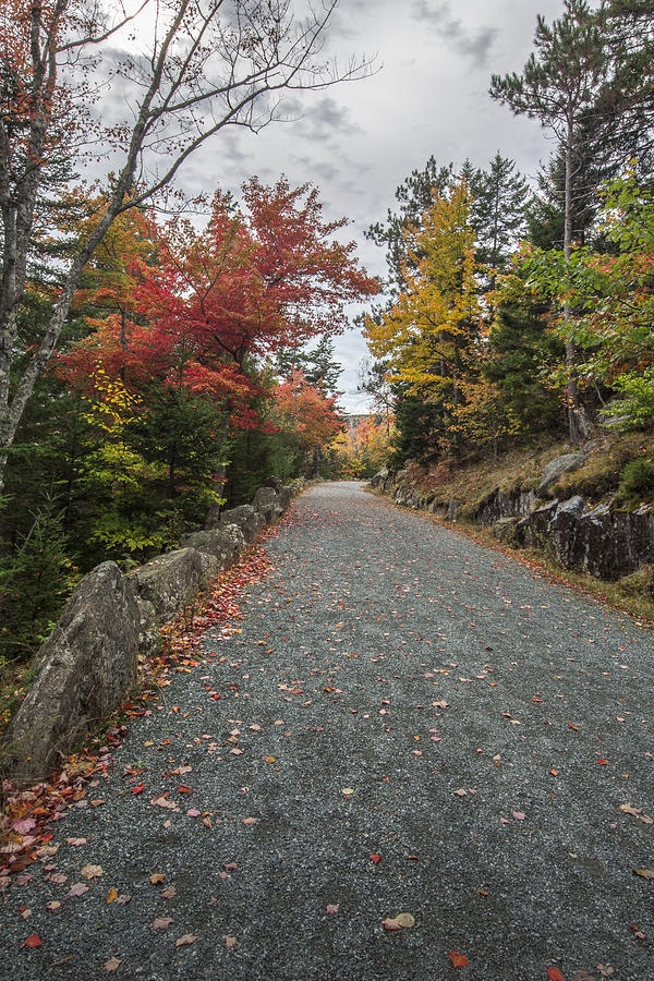 Maine Photograph - Where I Go by Jon Glaser