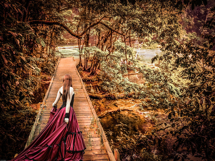 Woods Photograph - Where Is The Bridge Going? by Catherine Arnas