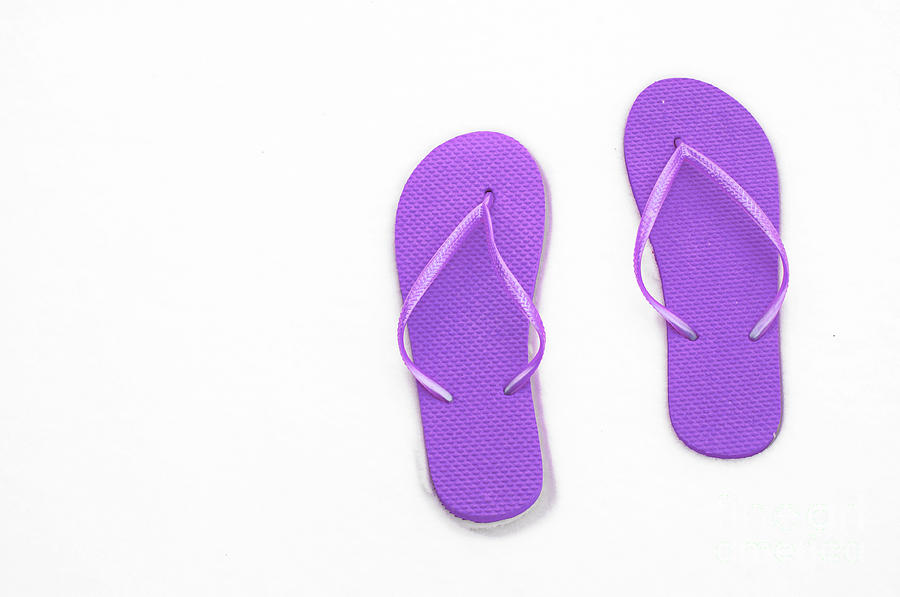 Thongs Photograph - Where On Earth Is Spring - My Purple Flip Flops Are Waiting by Andee Design