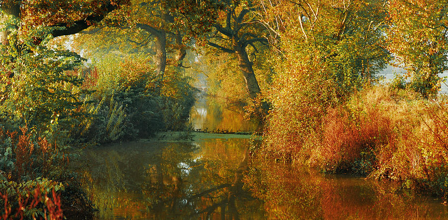 Pano Panoramic Landscape Woodland Scenes Orange The Fall River Stream Colours Autumn Beautiful Gorgeous Dreamy Photograph - Where The Adventure Begins by John Chivers