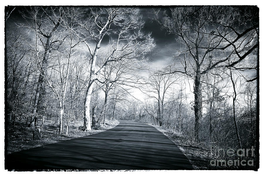Road Photograph - Where The Road Leads by John Rizzuto