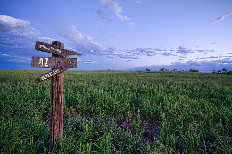 Country Photograph - Which Way To Go by James BO Insogna