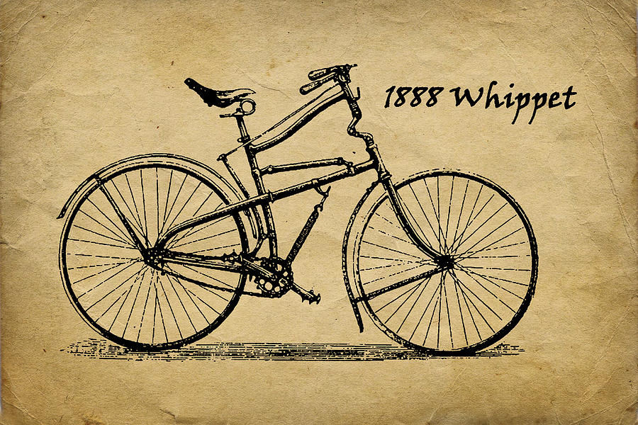 Whippet Photograph - Whippet Bicycle by Tom Mc Nemar