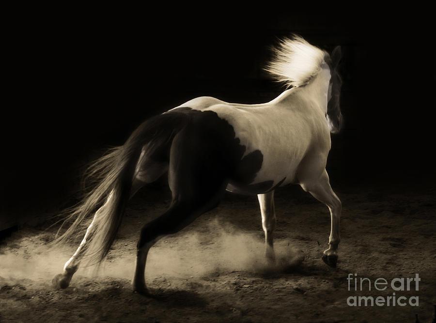 Unbridled Spirit by Michelle Twohig