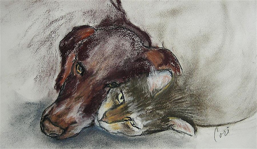 Dog Drawing - Whisker To Whisker by Cori Solomon