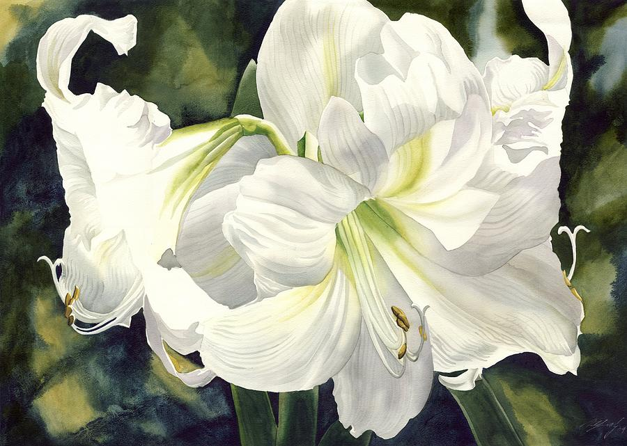 Watercolor Painting - White Amarylilis by Alfred Ng