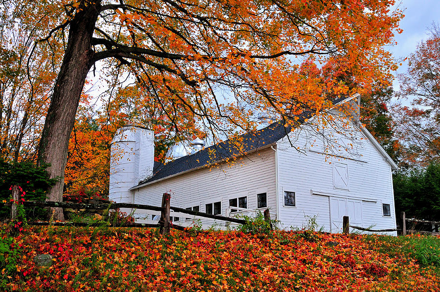 Barn Photograph - White Barn And Silo by Thomas Schoeller