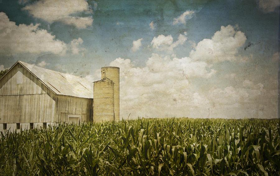 Landscape Photograph - White Barn by Michael Huddleston