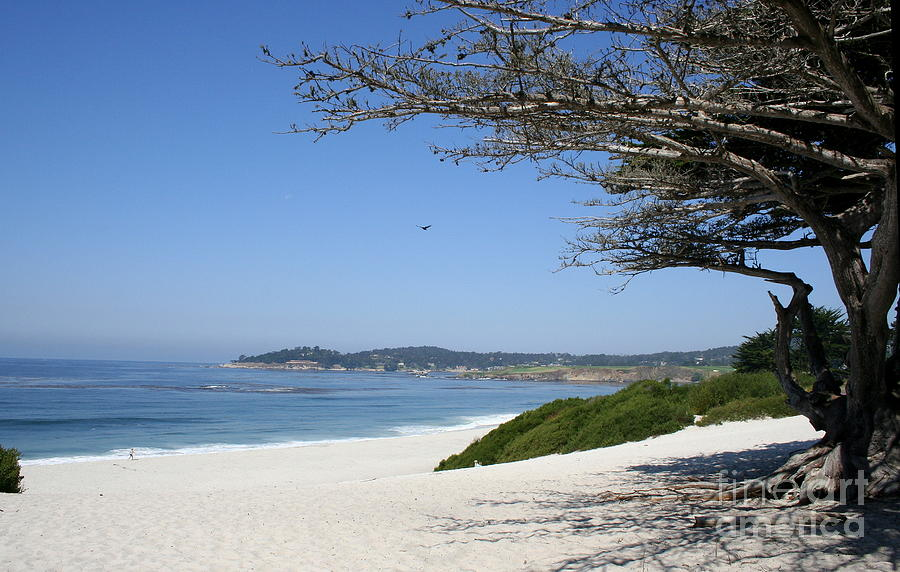 Beach Photograph - White Beach At Carmel by Christiane Schulze Art And Photography