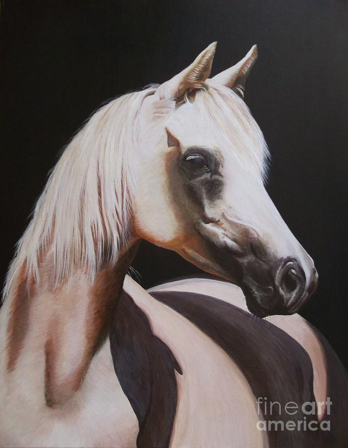 Animal Painting - White Beauty by Jill Parry